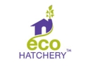 Eco Hatchery