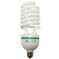 Longstar 55W T4 Daylight CFL FE-US-55W/50K