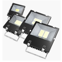 PacLights FFL100 LED 100W LEDgacy Flood Light