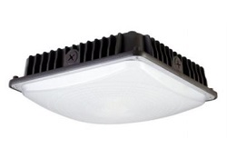 Nebulite 45W  LED Canopy Light 5000K CPS-45W